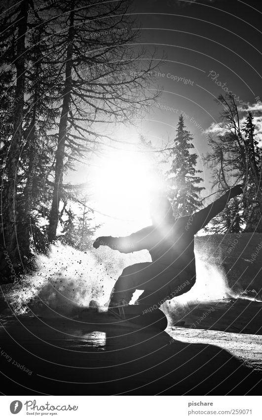 Free Sonne Winter Berge u. Gebirge Gefühle Schnee Sport Freizeit & Hobby ästhetisch Lebensfreude Coolness Körperhaltung sportlich Leidenschaft Kurve Schwung Snowboard