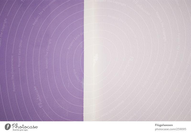 Lila Farbe Wand Architektur Stil Kunst Innenarchitektur Arbeit & Erwerbstätigkeit Wohnung Design Dekoration & Verzierung Häusliches Leben Lifestyle violett Umzug (Wohnungswechsel) Reichtum Renovieren