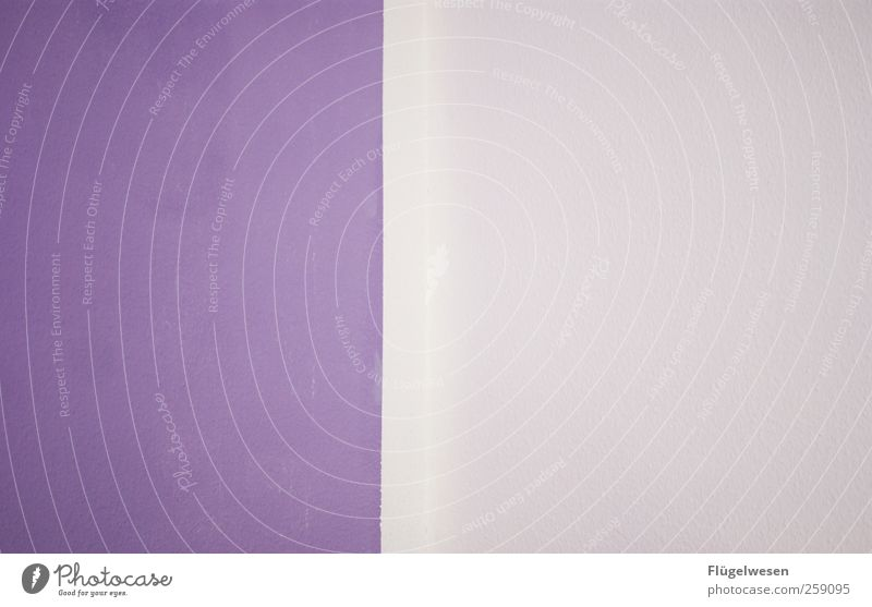 Lila Farbe Wand Architektur Stil Kunst Innenarchitektur Arbeit & Erwerbstätigkeit Wohnung Design Dekoration & Verzierung Häusliches Leben Lifestyle violett