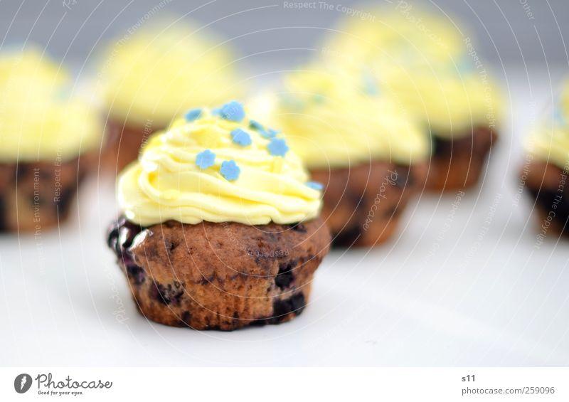 350 | Törtchen für alle! Lebensmittel Dessert Sahne Cupcake Ernährung Kaffeetrinken Festessen Fingerfood Duft Feste & Feiern fantastisch schön süß blau gelb