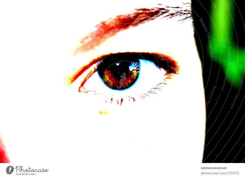 Look at me Frau Auge braun Wimpern Augenbraue Regenbogenhaut Gesicht