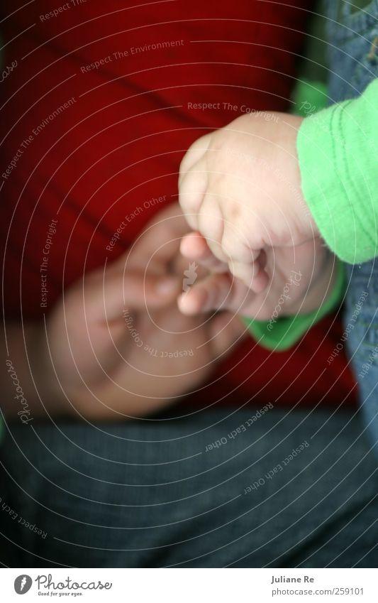 10 | Brüder Mensch Kind Hand Liebe Leben Gefühle Glück Familie & Verwandtschaft Körper Wohnung Idylle Kindheit Wachstum Baby Finger Warmherzigkeit