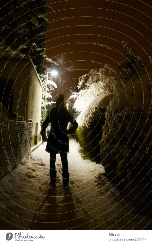 buhuhu Mensch Winter dunkel Schnee Wege & Pfade Schneefall Regen Angst gefährlich stehen Todesangst Gewalt Mütze Mantel Aggression Feindseligkeit