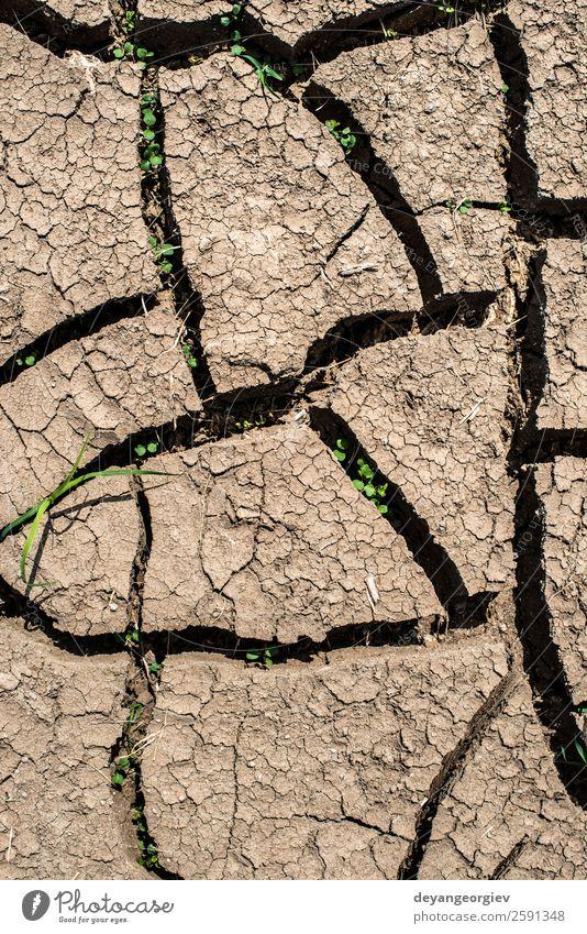 Natur Umwelt natürlich braun Erde dreckig Klima Boden heiß Riss Oberfläche Konsistenz Dürre Schlamm Ton