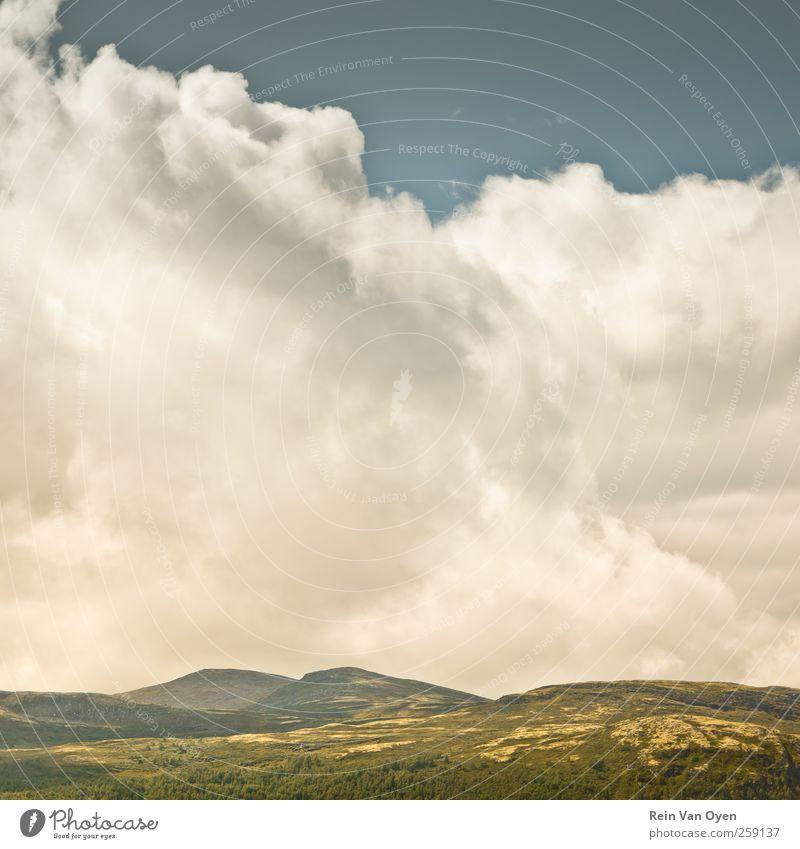 Norwegen Himmel Wolken Horizont Wetter Schönes Wetter Baum Hügel Berge u. Gebirge genießen frei Freiheit Glück Inspiration Abenteuer Farbfoto Außenaufnahme