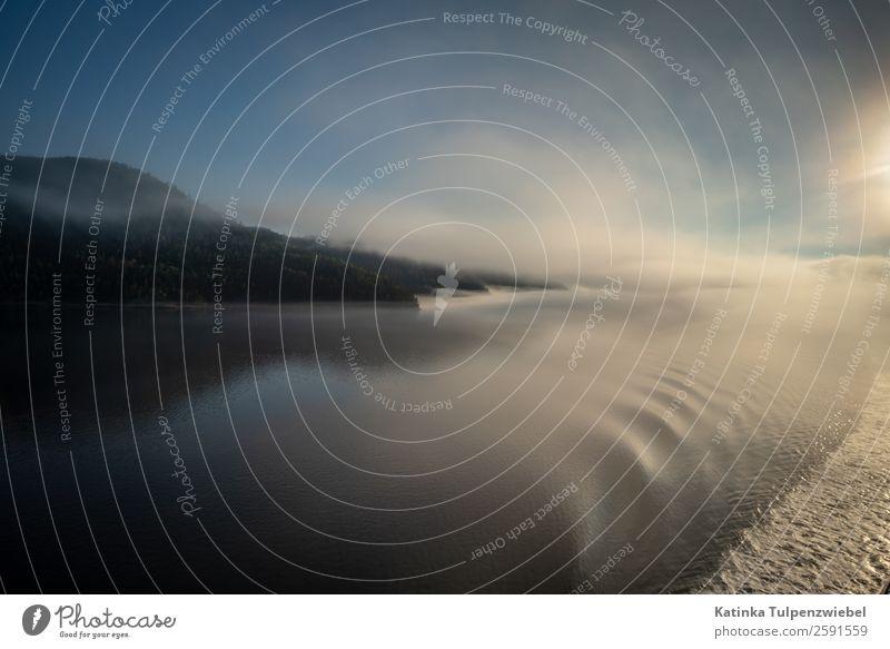 Morgenstimmung mit Blick auf die Berge im Saguenay Fjord Ferien & Urlaub & Reisen Tourismus Ausflug Abenteuer Sightseeing Kreuzfahrt Expedition Wellen