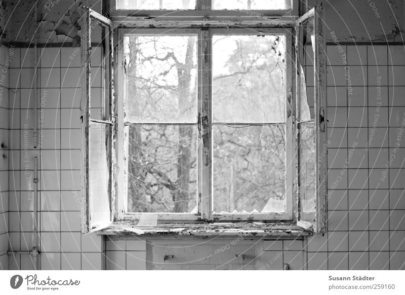 beelitz. Traumhaus Fenster alt kaputt Scherbe lüften Vandalismus Heilstätte Küche Fliesen u. Kacheln Schwarzweißfoto offen Fensterscheibe Innenaufnahme