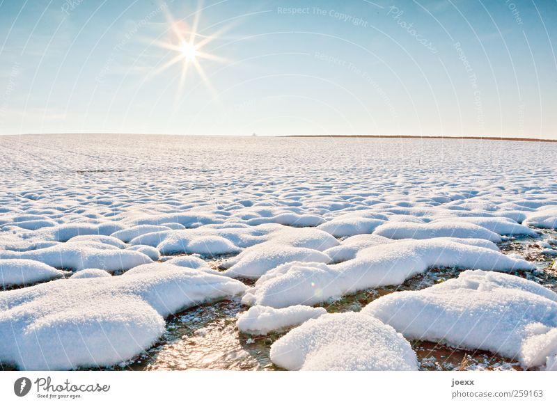 Kaltstart Landschaft Himmel Wolkenloser Himmel Sonne Winter Schönes Wetter Schnee Feld kalt blau gelb weiß ruhig Freiheit Horizont Natur Schneelandschaft