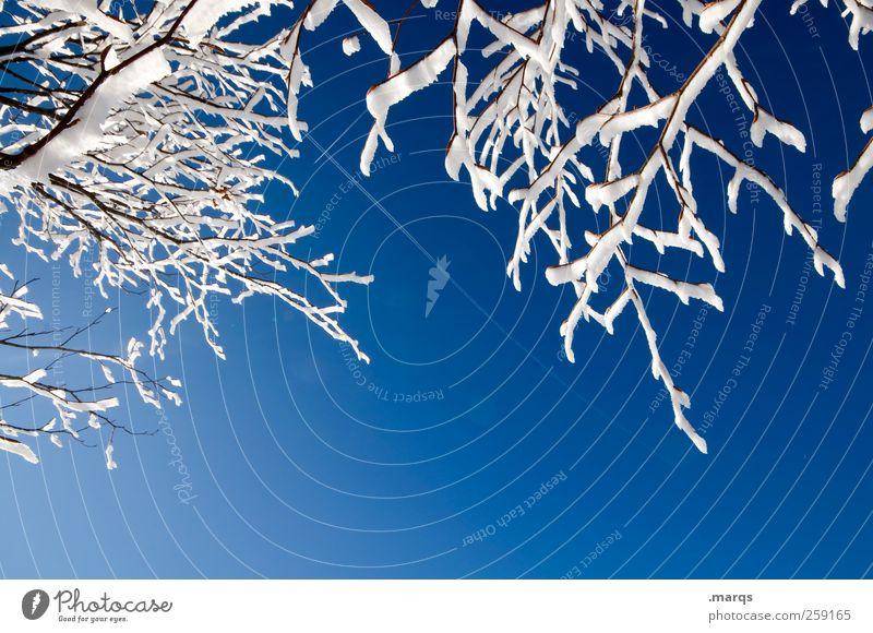 Frost Natur blau weiß schön Winter Erholung kalt Umwelt Schnee Berge u. Gebirge Eis Hintergrundbild Klima Ast Schönes Wetter