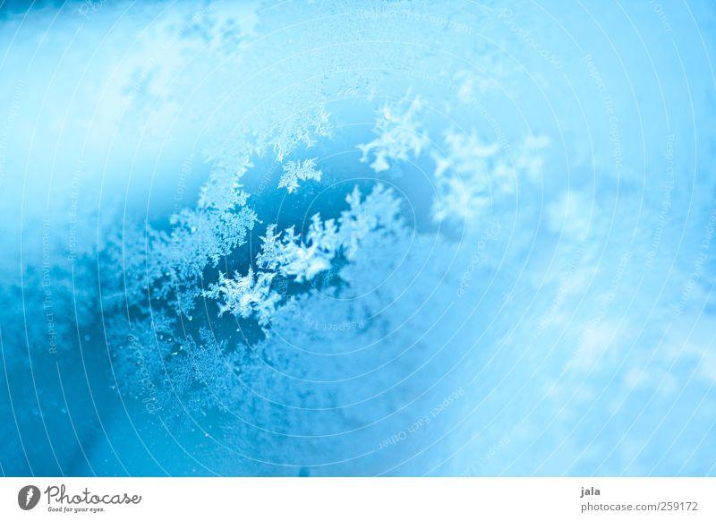 frozen effect blau Wasser Winter Eis Glas ästhetisch Frost