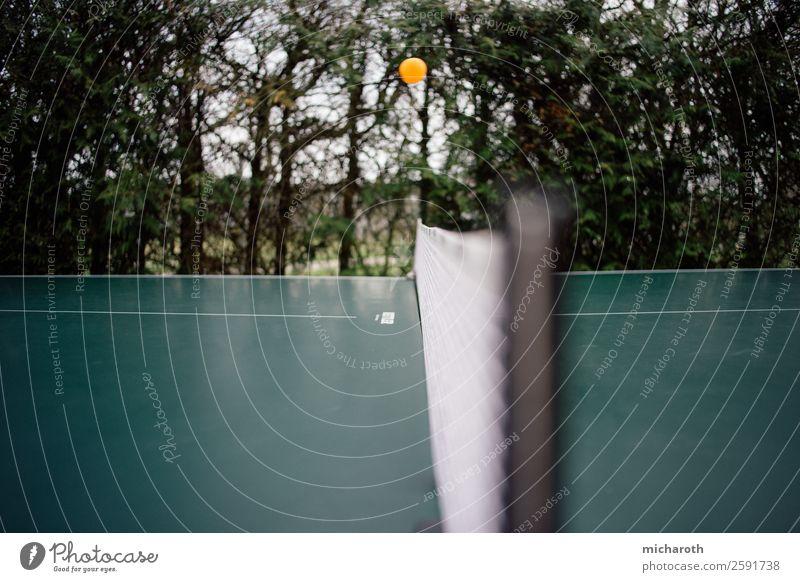 PingPong Freizeit & Hobby Spielen Geburtstag Sport Geschwindigkeit gelb grün orange Freude Glück Lebensfreude Erfolg diszipliniert Ausdauer Nostalgie Garten