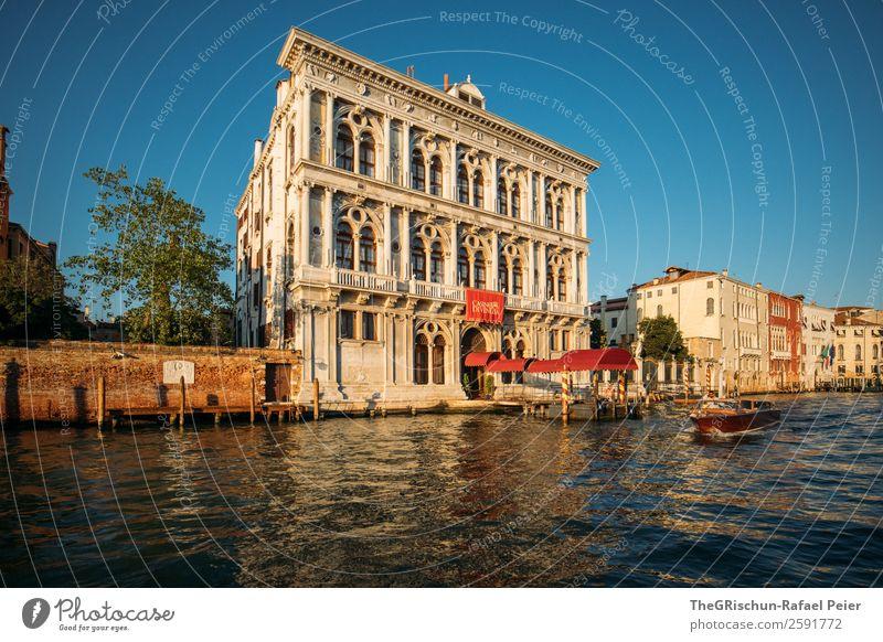 Venedig Kleinstadt Stadt Hafenstadt blau gelb gold rot Wasser Italien Haus Wasserfahrzeug Schifffahrt Baum Kanal Farbfoto Außenaufnahme Menschenleer
