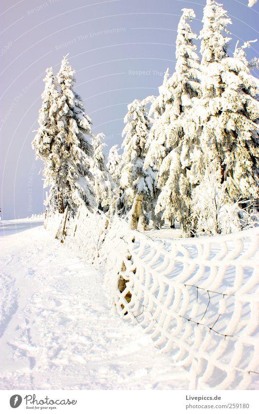 Othal`s finest 1 Ferien & Urlaub & Reisen Tourismus Winter Schnee Winterurlaub Berge u. Gebirge wandern Wintersport Skipiste Natur Landschaft Pflanze Himmel