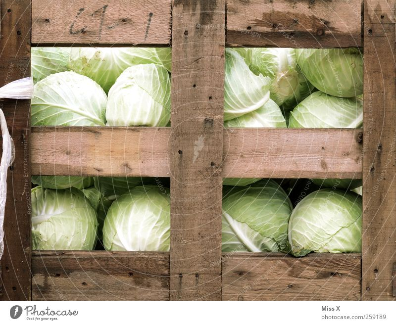 Kohlkiste Ernährung Lebensmittel Gesundheit frisch Gemüse lecker Salat Salatbeilage Kohl Kohlgewächse Holzkiste Wochenmarkt Gemüseladen Gemüsemarkt Obst- oder Gemüsestand Obstkiste
