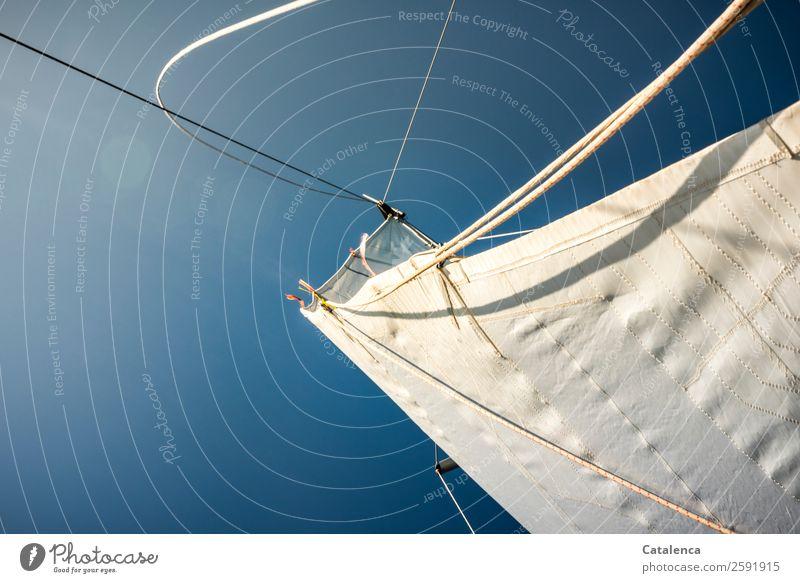 Weißblau Himmel Ferien & Urlaub & Reisen Sommer weiß Meer Freude Umwelt Freiheit Stimmung Ausflug Freizeit & Hobby Kraft genießen Schönes Wetter Seil