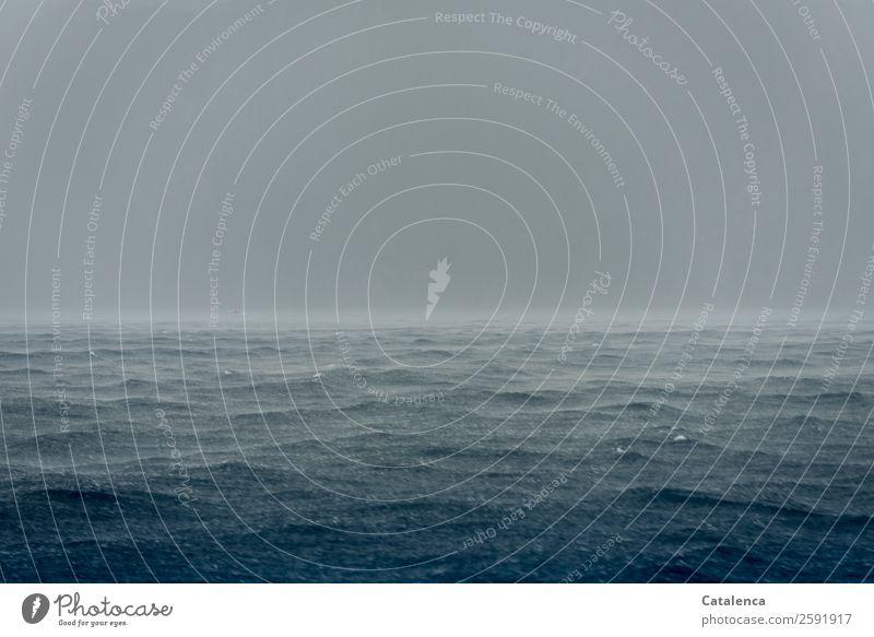 Regen Natur Urelemente Wasser Wassertropfen Himmel Horizont Sommer Klima Wetter schlechtes Wetter Wellen Meer Mittelmeer beobachten Bewegung fallen Flüssigkeit