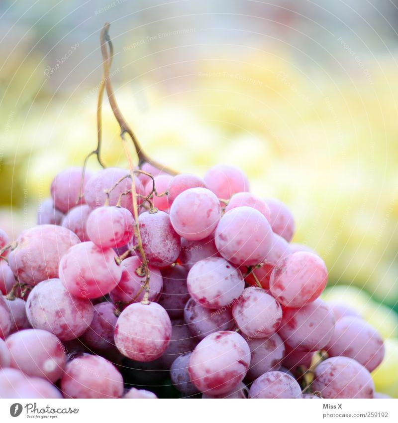Blaue Trauben Lebensmittel Frucht Ernährung Bioprodukte Vegetarische Ernährung frisch lecker saftig süß violett Weintrauben Farbfoto mehrfarbig Nahaufnahme