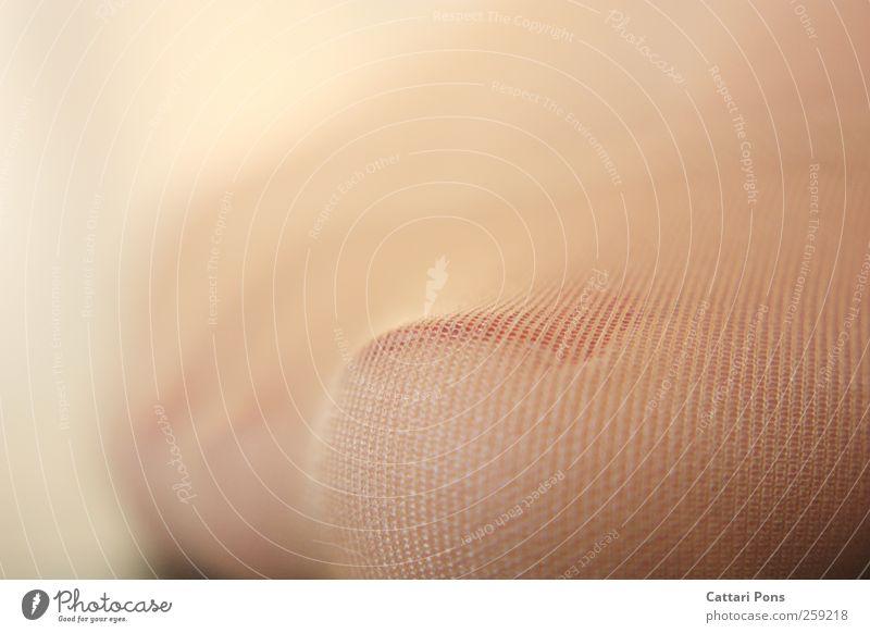 Söckchen Körper Fuß Zehen Zehennagel Strümpfe Strumpfhose Unterwäsche Stoff stehen Nagellack hell zart sanft Bekleidung Pediküre Muster Makroaufnahme