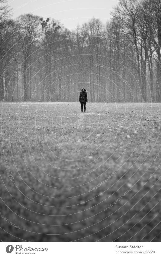 . Mensch Frau Natur Jugendliche Baum Winter Einsamkeit Erwachsene Wald Ferne Wiese Körper stehen 18-30 Jahre einzeln dünn