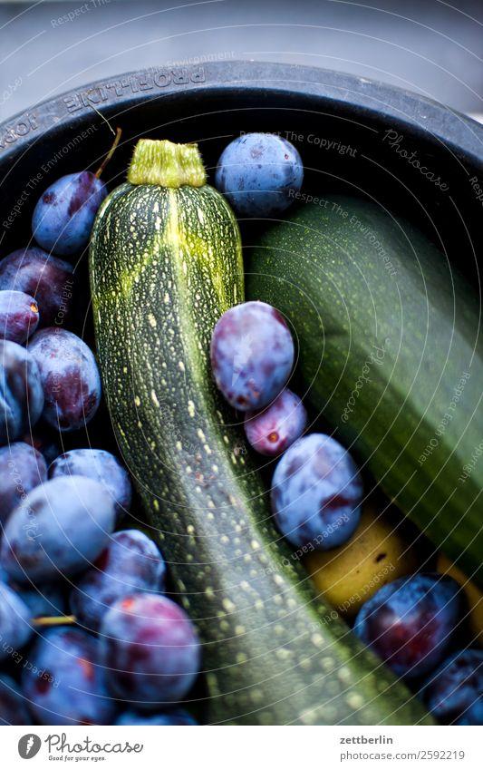 Pflaumen, Äpfel und Zucchini Apfel Ernte frisch Frucht Garten Gemüse Schrebergarten Kleingartenkolonie Menschenleer Pflanze selbstversorgung Sträucher