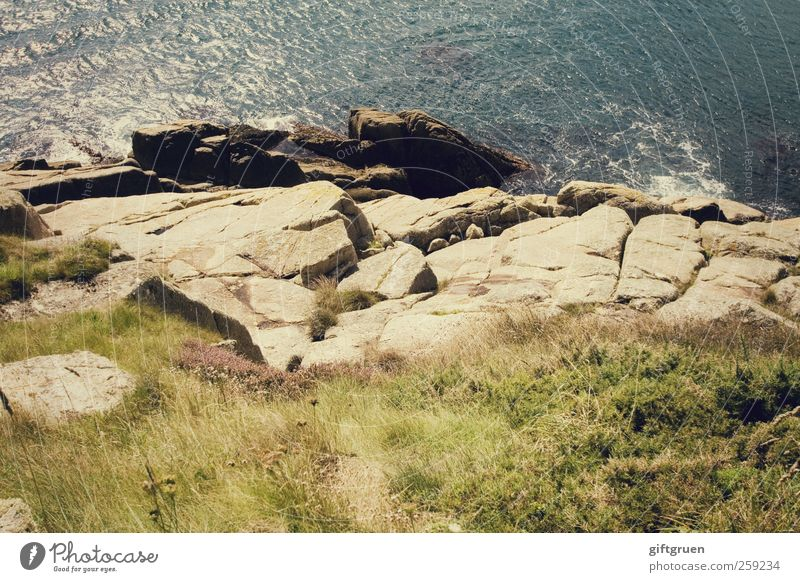 abgrund Umwelt Natur Landschaft Urelemente Erde Wasser Sommer Schönes Wetter Pflanze Gras Grünpflanze Wiese Felsen Wellen Küste Meer Insel hoch Stein steinig
