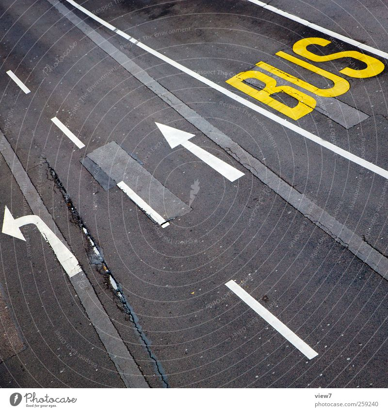 bus lane alt Straße Wege & Pfade Stein Linie Schilder & Markierungen Beton Ordnung Verkehr modern authentisch Schriftzeichen Streifen Hinweisschild Güterverkehr & Logistik einfach