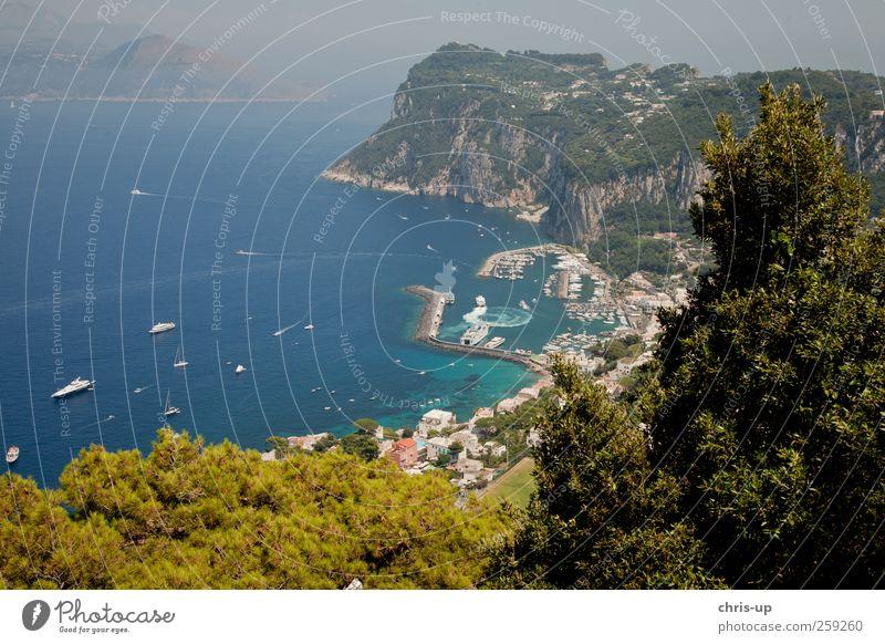 Hafen von Capri Natur blau Wasser Ferien & Urlaub & Reisen Meer Strand Ferne Umwelt Freiheit Küste Wasserfahrzeug hoch Insel Tourismus Italien