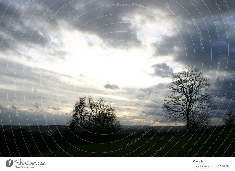 Open Sly Himmel Baum Winter Wolken Regenwolken