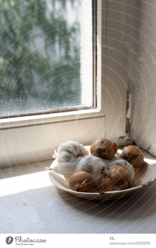 zwiebeln und knoblauch Fenster Lebensmittel Häusliches Leben Wohnung Ernährung einfach Gemüse Schalen & Schüsseln Teller Alltagsfotografie Zwiebel Fensterbrett
