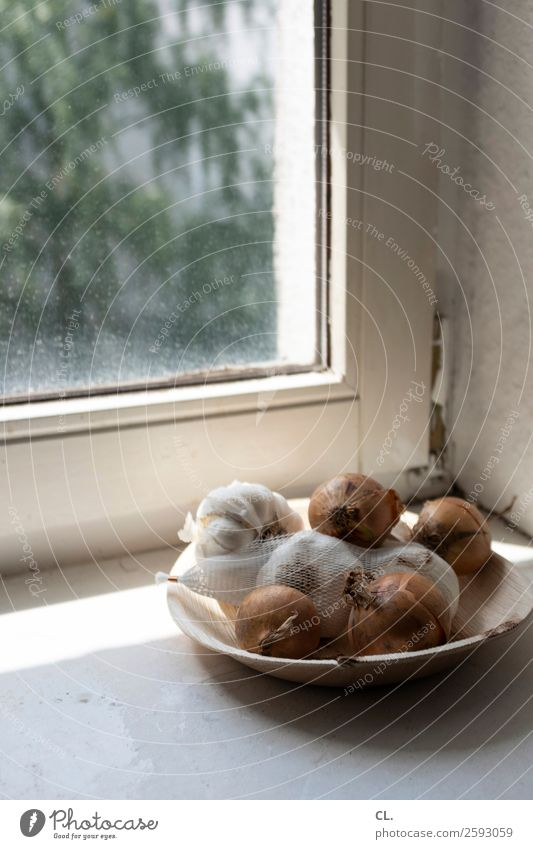 zwiebeln und knoblauch Lebensmittel Gemüse Zwiebel Knoblauch Ernährung Teller Schalen & Schüsseln Häusliches Leben Wohnung Fenster Fensterbrett einfach