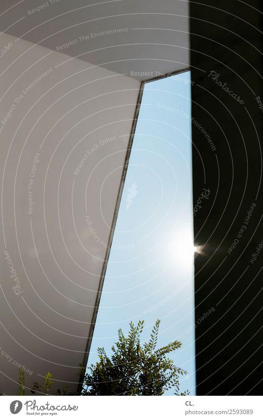 sonneneck Himmel Wolkenloser Himmel Sonnenlicht Schönes Wetter Baum Haus Gebäude Architektur Mauer Wand ästhetisch eckig Glaube Religion & Glaube Hoffnung