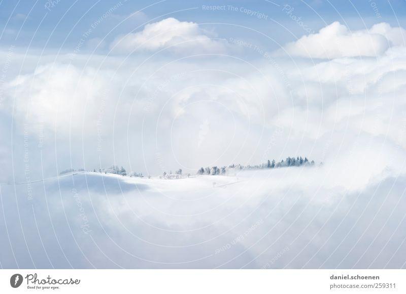 dreamland - auf schwarzwälderisch Natur blau weiß Ferien & Urlaub & Reisen Winter Wolken Ferne Umwelt Schnee Landschaft Berge u. Gebirge Freiheit hell Wind Tourismus Surrealismus
