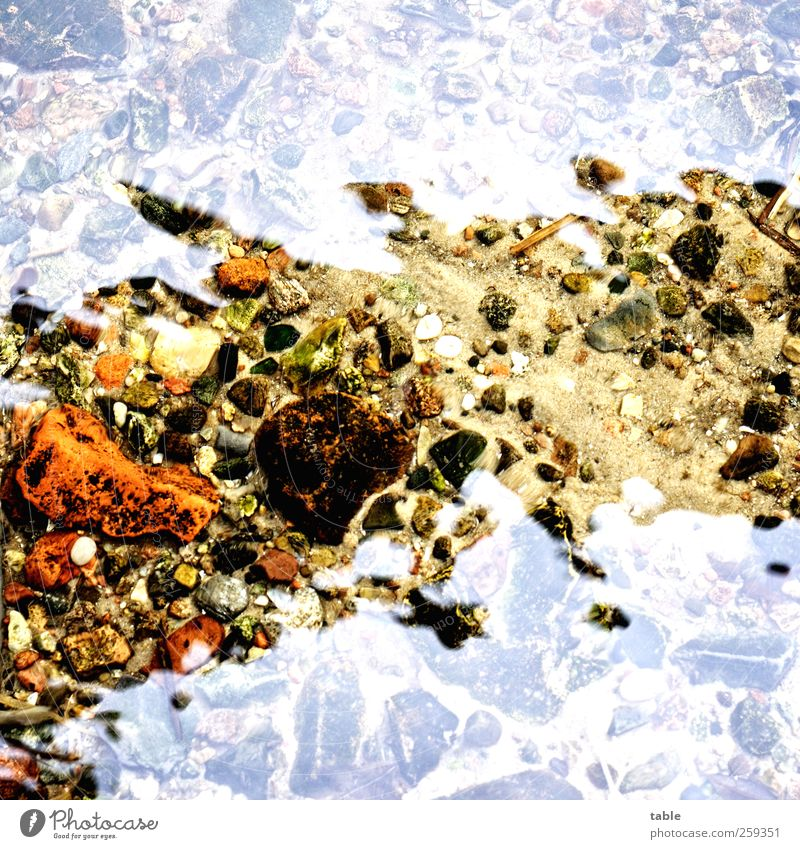 reflection Umwelt Natur Urelemente Wasser Sommer Herbst Winter Klima Seeufer Großer Müggelsee Boden Stein glänzend frisch nass natürlich Sauberkeit braun