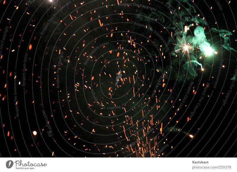the year of the dragon III Freude Beleuchtung Feste & Feiern leuchten Geburtstag Beginn Wandel & Veränderung Feuer Show Rauch Veranstaltung Silvester u. Neujahr Karneval Jahrmarkt Feuerwerk Nachtleben