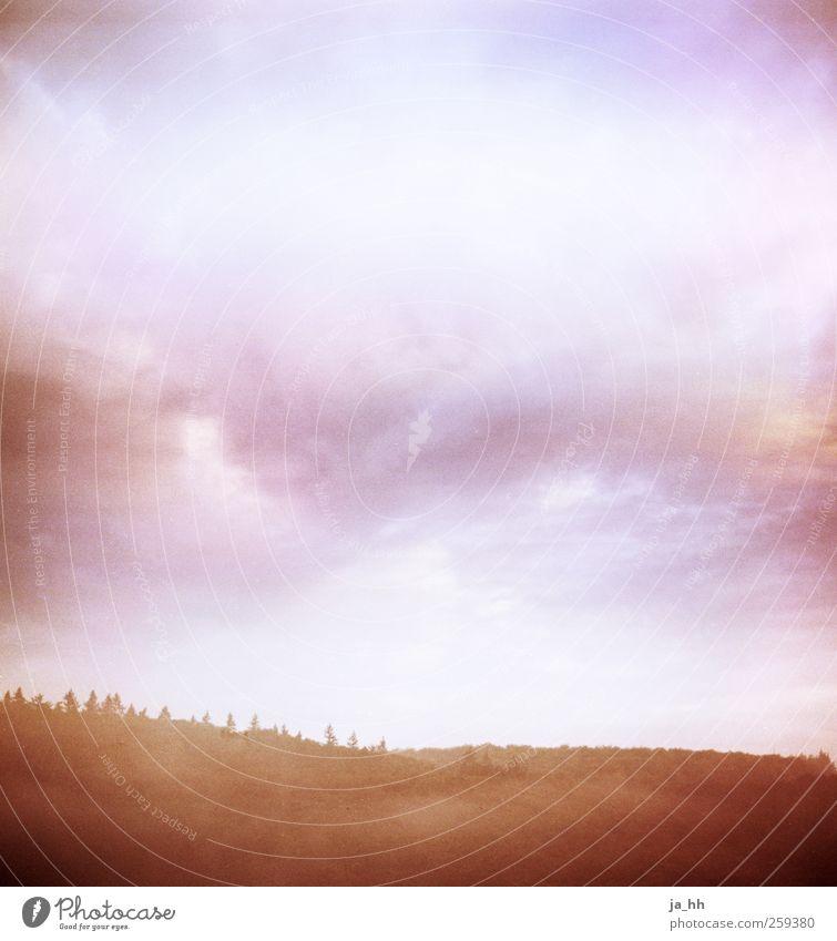 Stromberg Himmel Natur Pflanze Baum Erholung Landschaft Wolken Ferne Wald Berge u. Gebirge Glück außergewöhnlich Horizont Luft leuchten wandern