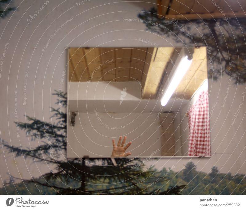 Innenarchitektur. Tapete mit Bäumen. Hand spiegelt sich im Wandspiegel. Winken. Humor. Spiegel Bad rot weiß winken Toilette Vorhang kariert Wald Tapetenmuster