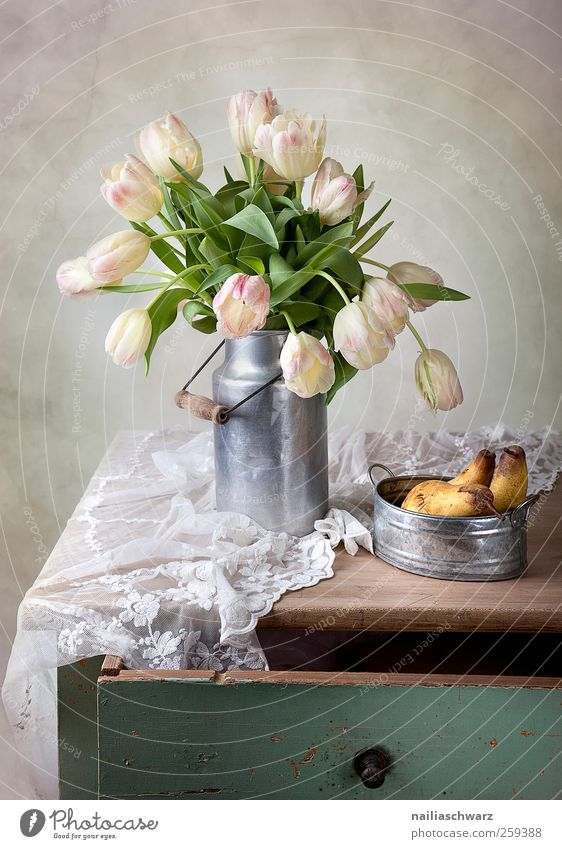 Stilleben mit Tulpen grün schön Pflanze Blume Blatt gelb Ernährung Lebensmittel Holz Blüte Metall Kunst braun Frucht rosa liegen