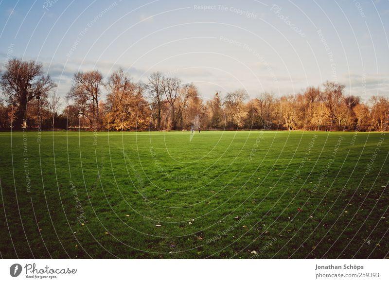 Oxford II Umwelt Natur Landschaft Himmel Herbst Park Wiese Wald Großbritannien Stadtrand blau braun grün Außenaufnahme Englisch flach Freiheit Freizeit & Hobby
