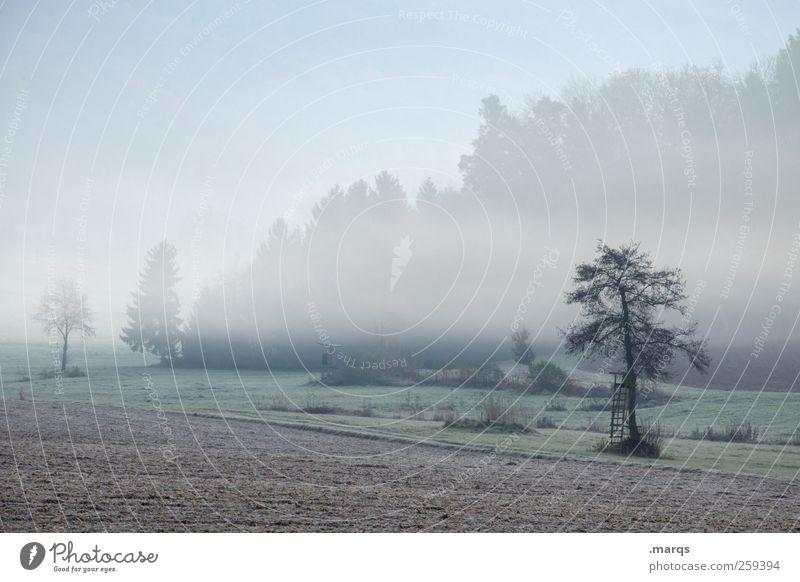 Benebelt Natur Baum Umwelt kalt Landschaft Gefühle Stimmung Feld Nebel Idylle Landwirtschaft Umweltschutz Klimawandel Forstwirtschaft Hochsitz