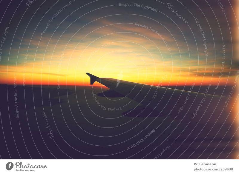 Ohne Titel Luftverkehr Ferien & Urlaub & Reisen Pilot Altimeter Flugzeug Perspektive Farbfoto Außenaufnahme Experiment Menschenleer Dämmerung Totale