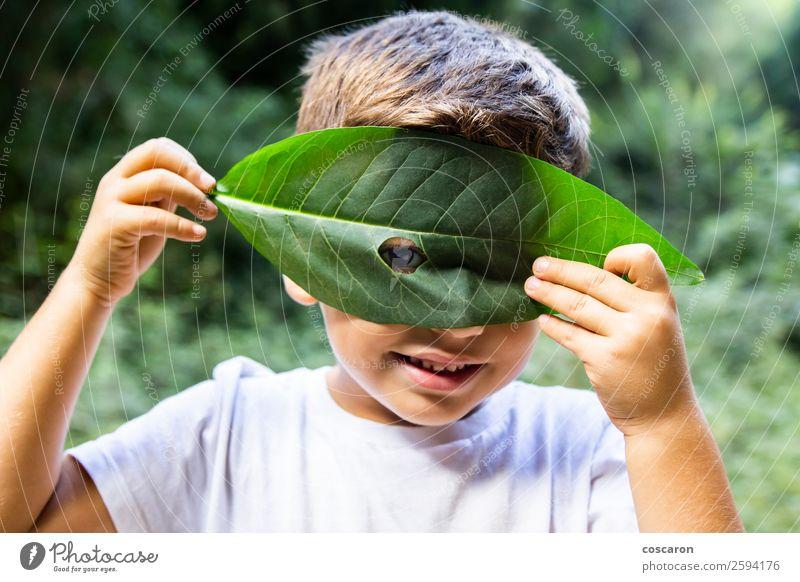 Kleiner Junge, der durch ein Loch in einem Blatt schaut. Freude Glück schön Spielen Garten Kind Schule Mensch Kleinkind Frau Erwachsene Kindheit 1 3-8 Jahre