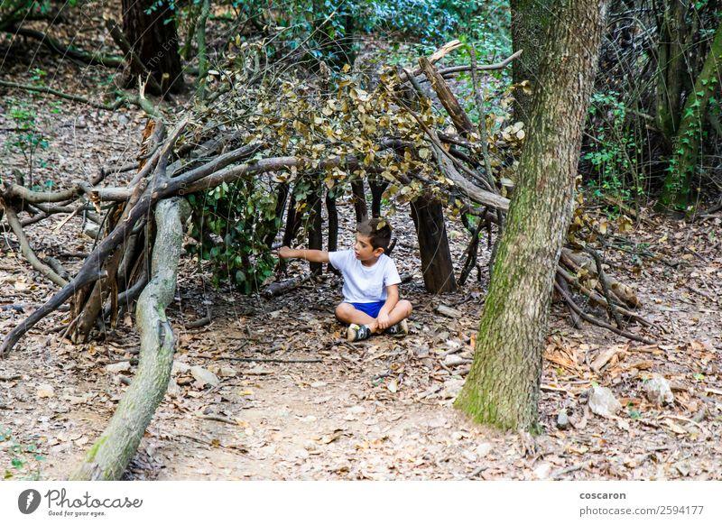 Kleiner Junge in seiner selbstgebauten Hütte im Wald. Lifestyle Freude Glück Leben Freizeit & Hobby Spielen Freiheit Sommer Haus Kind Mensch Kleinkind Kindheit