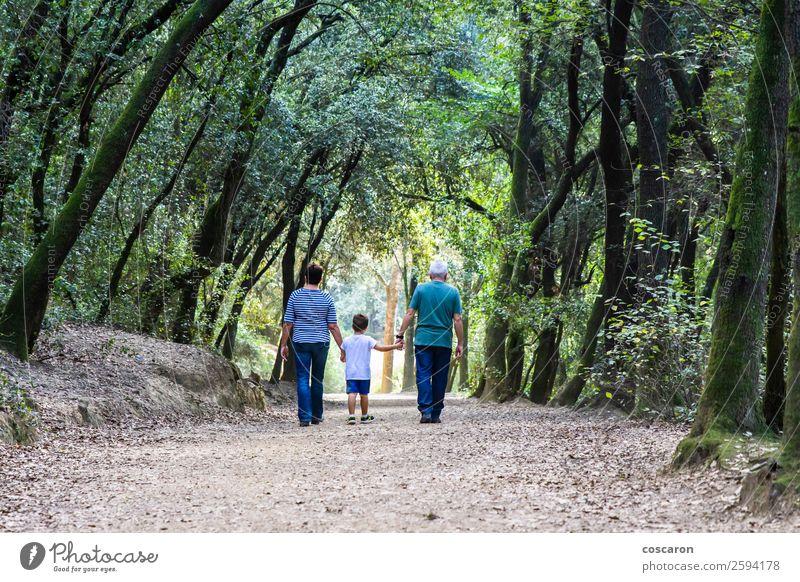 Rentnerpaar, das mit seinem Enkel auf dem Pfad eines Waldes spazieren geht. Glück schön Freizeit & Hobby Ferne Kind Mensch Kleinkind Junge Frau Erwachsene Mann