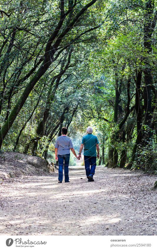 Rentnerpaar, das gemeinsam auf dem Weg eines Waldes geht. Lifestyle Glück schön Gesundheit Gesundheitswesen Wellness Erholung Windstille Meditation Ferne