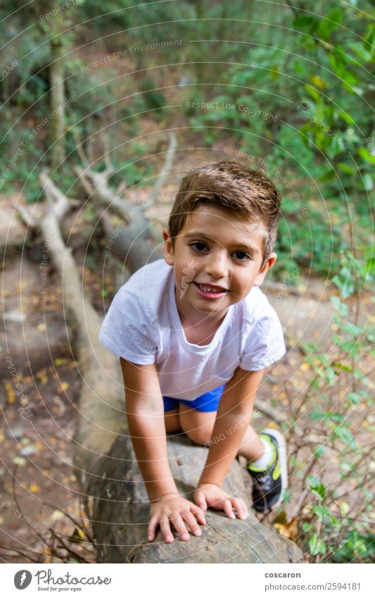 Süßes Kind im Wald, das allein spielt. Lifestyle Freude Glück schön Gesicht Spielen Ferien & Urlaub & Reisen Tourismus Abenteuer Sommer Garten Mensch maskulin