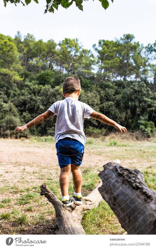 Süßes Kind im Wald, das allein spielt. Lifestyle Freude Glück schön Gesicht Spielen Ferien & Urlaub & Reisen Sommer Garten Mensch Kleinkind Junge Kindheit 1