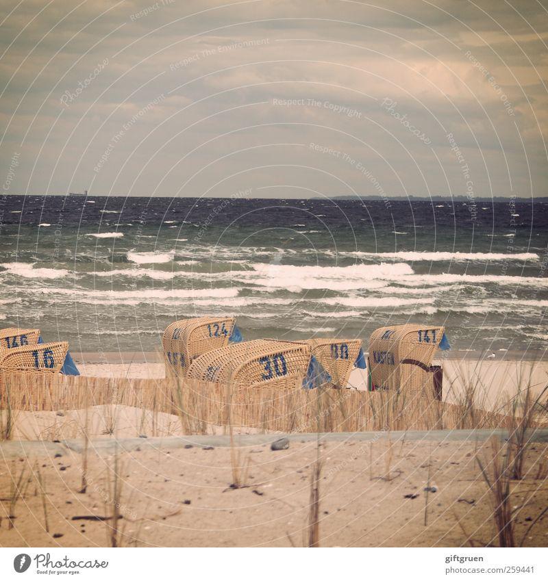 zahlensalat an salzwasser Umwelt Natur Urelemente Sand Wasser Himmel Wolken Gewitterwolken Horizont Unwetter Wind Sturm Wellen Küste Strand Ostsee Meer