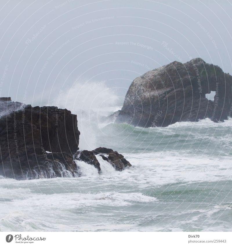 Pazifikbrandung Meer Wellen Natur Urelemente Wasser Wetter schlechtes Wetter Unwetter Wind Sturm Regen Felsen Küste Brandung Gischt toben Aggression bedrohlich