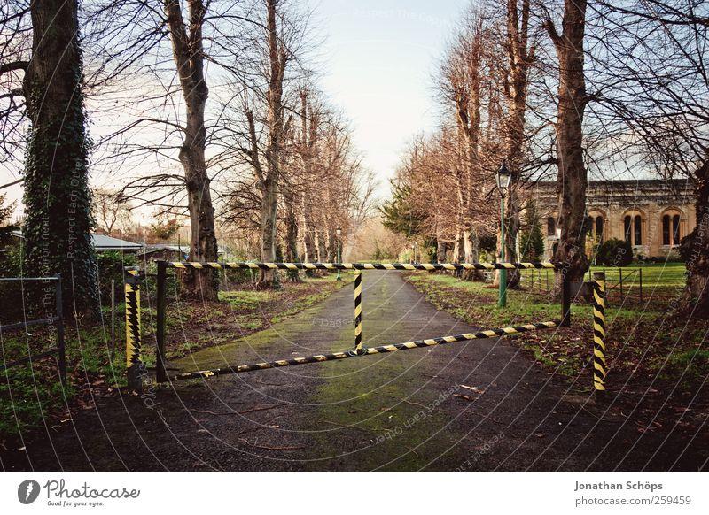 beschränkter Durchgang I Himmel Natur Baum schwarz gelb Herbst Umwelt Wege & Pfade Park geschlossen stoppen Tor entdecken gestreift Allee kahl