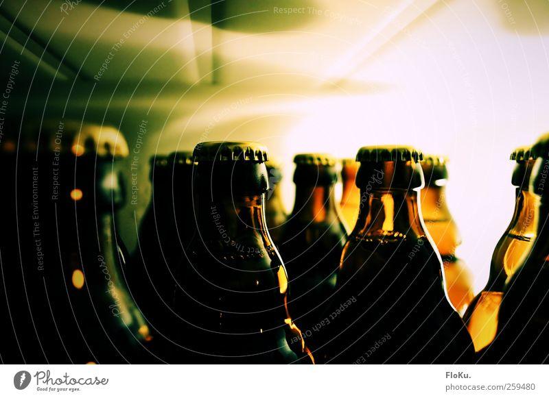 Kühlschrank voll Lebensmittel Getränk Erfrischungsgetränk Alkohol Bier Flasche Küche Nachtleben Bar Cocktailbar Feste & Feiern Glas hell kalt lecker braun grün